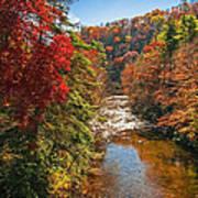 Fall Along The Linville River Art Print