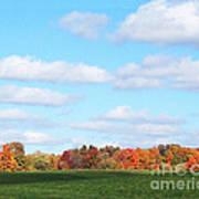 Fall Colors IIi Art Print