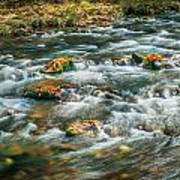 Fall Colors Stream Great Smoky Mountains Painted  Art Print