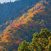 Fall Smoky Mountains Art Print