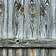 Fence Detail Art Print
