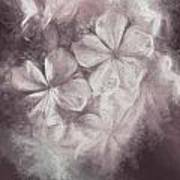 Fibonacci Flowers In Energy Manipulation Calculus Art Print