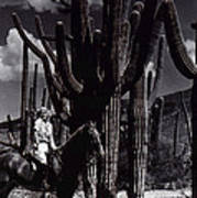 Film Homage Jean Harlow Bombshell 1933 Saguaro National Monument Tucson Arizona Duo-tone 2008 Art Print
