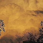 Film Noir Cornell Wilde Storm Fear 1956 Summer Storm Casa Grande Arizona 2004 Art Print