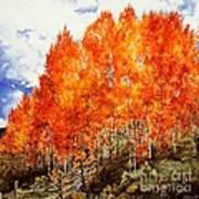 Flaming Aspens 2 Art Print