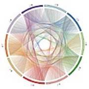 Flow Of Life Flow Of Pi Art Print