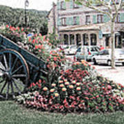 Flower Cart In Sisteron France Art Print