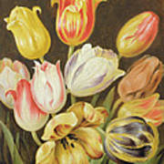 Flower Study Art Print