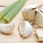 Fresh Garlic And Green Onion Art Print