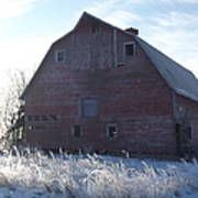 Frosty Barn Art Print