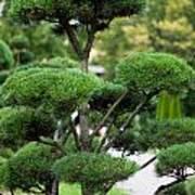 Garden Landscape - Topiary Art Print
