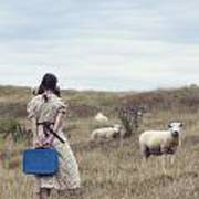 Girl With Sheeps Art Print