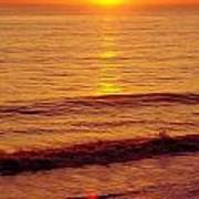 Golden - Sunrise Art Print