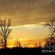 Golden Sunset 61 Art Print