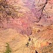 Grand Canyon 33 Art Print