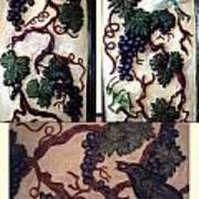 Grapevine Art Print by Charles Lucas