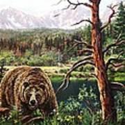 Grizzley Art Print by W  Scott Fenton