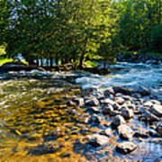 Gull River Art Print