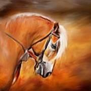 Haflinger Art Print