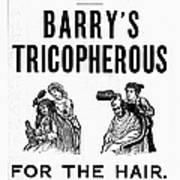 Hair Restorative, 1887 Art Print