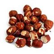 Hazelnuts Art Print