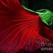 Hibiscus Red Art Print