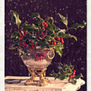 Holly And Berries Art Print
