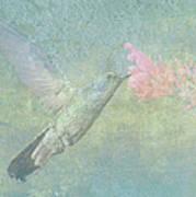 Hummingbird Tune Art Print