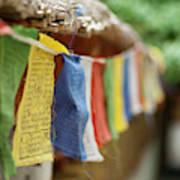 India, Ladakh, Alchi, Colorful Buddhist Art Print