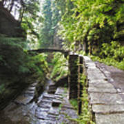 Ithaca Gorge Art Print