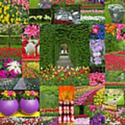 Keukenhof Gardens Collage Art Print