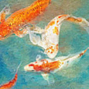 Koi Art Print by Robert Jensen