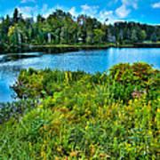 Lake Abanakee In The Adirondacks Print by David Patterson