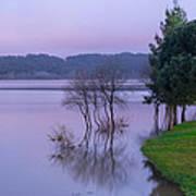 Lake Pateira V Art Print
