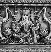 Lakshmi  Art Print by Tim Gainey