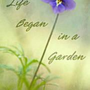 Life Began In A Garden Art Print