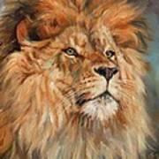 Lion Art Print by David Stribbling