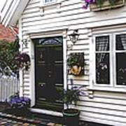Little House In Norway Art Print