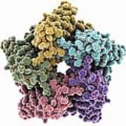 Lumazine Synthase Molecule Art Print