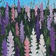 Lupines - Art By Bill Tomsa Art Print