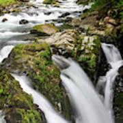 Lush Waterfall Olympic National Park Art Print
