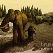 Mammoths Art Print