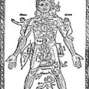 Man Of Signs, 1495 Art Print