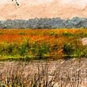 Marsh Land Art Print