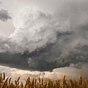 Marshmallow - Bubbling Storm Cloud Over Wheat In Kansas Art Print