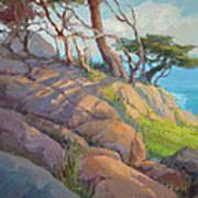Morning Light At Point Lobos Art Print