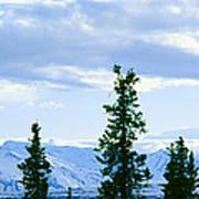 Mount Mckinley, Alaska Art Print