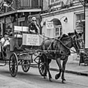 New Orleans - Carriage Ride Bw Art Print