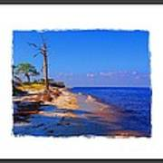 North Florida Beach Art Print