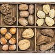 Nuts In Rustic Wooden Box Art Print